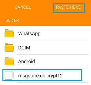 Pegar la copia de seguridad de WhatsApp en la tarjeta SD